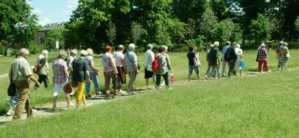 Liczna grupa seniorów idzie po łące, w tle wysokie drzewa.