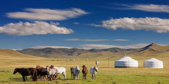 Ilustracja dekoracyjne. Mongolski step. Konie, jurty, błękitne niebo.